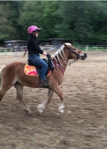 Trot to canter transitions, aka giraffe impressions